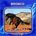 Bronco SmokEjuice, Premium Natural E-Liquid
